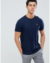 Hollister - Crew Neck T-shirt With Seagull Logo In Navy - Lyst