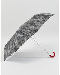 Lulu Guinness - Superslim 2 Doodle Snake Skin Umbrella - Lyst