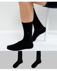 CALVIN KLEIN 205W39NYC - Socks In 2 Pack Black - Lyst