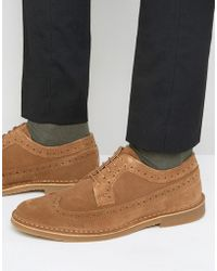 SELECTED - Royce Suede Brogue Shoes - Lyst