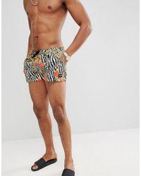 Jaded London - Swim Shorts In Zebra Baroque - Lyst