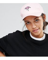 Adolescent Clothing - Flamingo Embroidered Baseball Cap - Lyst