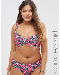 Marie Meili - Gwendolen Plus Size Bikini Top - Lyst