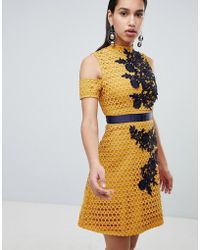 The 8th Sign - The Lace Skater Dress With Embroidered Detail - Lyst