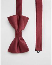 ASOS DESIGN - Bow Tie In Burgundy - Lyst