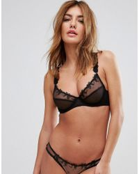 Kitty Coquete - By Mimi Holliday Underwired Sheer Bra - Lyst