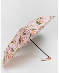 Ted Baker - Compact Umbrella In Peach Blossom Print - Lyst