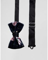 ASOS - Velvet Floral Bow Tie - Lyst