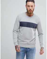 SELECTED - Sweatshirt With Panel Stripe - Lyst