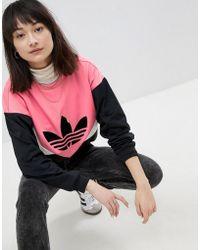 adidas Originals - Colorado Panelled Sweatshirt In Black And Pink - Lyst