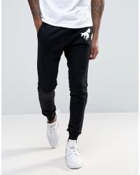 Abuze London - Wasp Joggers - Lyst