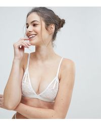 Wolf & Whistle - Floral Triangle Bra - Lyst