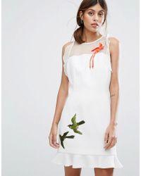 Whistles - Harlee Paradise Bird Dress - Lyst