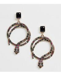 ALDO Crareven Bright Multi Colour Snake Earrings - Metallic