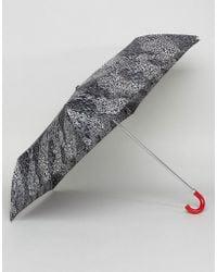 Lulu Guinness | Superslim 2 Doodle Snake Skin Umbrella | Lyst