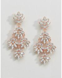 Coast - Floral Earrings - Lyst