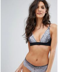 Free People - Fool's Gold Ombre Lace Underwire Bra - Lyst