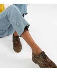 Monki - Leopard Print Pony Hair Lace Up Brogues In Brown - Lyst