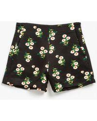 Azalea - Rosie Printed Shorts - Lyst