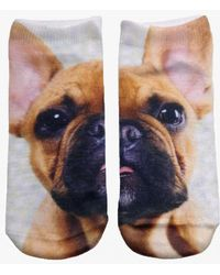 Living Royal - Puppy Ankle Socks - Lyst
