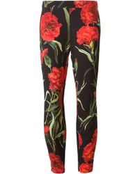 Dolce & Gabbana Carnations Print Trousers - Lyst