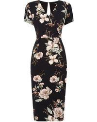 Oasis | Opium Pencil Dress | Lyst