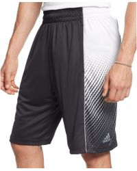 Adidas Black Fadeaway Shorts - Lyst