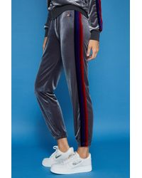 Aviator Nation - Classic Velvet Sweatpant - Lyst