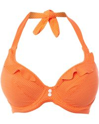 Freya Cherish Underwired Banded Halter Bikini Top - Lyst
