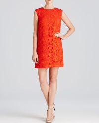 Cynthia Steffe Dress - Rayna Sleeveless Lace Shift red - Lyst