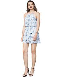 BCBGMAXAZRIA - Bcbg Caylan Palms-print Dress - Lyst