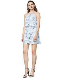 BCBGMAXAZRIA - Caylan Palms-print Dress - Lyst
