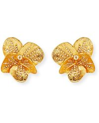 Oscar de la Renta - Brushed Swarovski Crystal Clip-on Earrings - Lyst