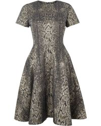Alice By Temperley Short Sleeved Venice Snake Print Dress - Lyst