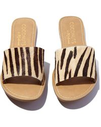 Matisse - Zebra Cabana Sandals - Lyst