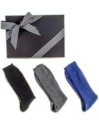Black.co.uk - Black Grey And Navy Egyptian Cotton Lisle Socks Gift Set - Lyst