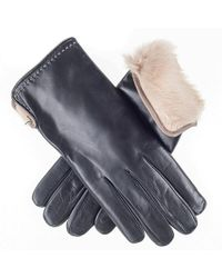 Black.co.uk - Black And Cappuccino Rabbit Lined Leather Gloves - Lyst