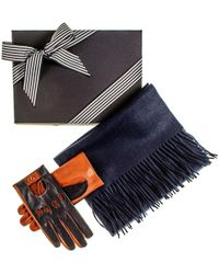 Black.co.uk - Navy And Tobacco Driving Gloves And Navy Cashmere Scarf Gift Set - Lyst