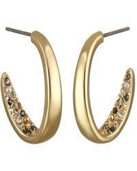 Karl Lagerfeld Crystal Hoop Earrings - Metallic