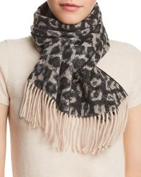 C By Bloomingdale s - Leopard Cashmere Scarf - Lyst ee9760a19f0