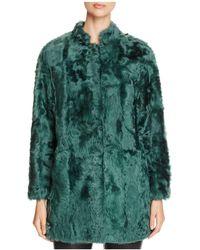 Maximilian - Lamb Fur Coat - Lyst