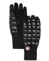 Canada Goose - Northern Tech Gloves - Lyst