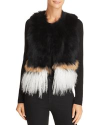 525 America - Real Asiatic Raccoon Fur & Mongolian Lamb Vest - Lyst