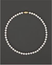 "Bloomingdale's - Cultured Akoya 7mm Pearl Strand Necklace In 14k Yellow Gold, 16"" - Lyst"