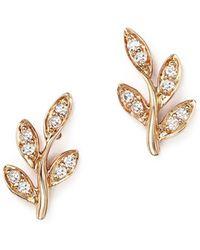 Bloomingdale's - Diamond Leaf Stud Earrings In 14k Rose Gold, .10 Ct. T.w. - Lyst
