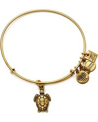 ALEX AND ANI - Charity By Design Collection - Lyst