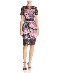 Tadashi Shoji - Lace-trimmed Floral-print Sheath Dress - Lyst