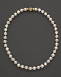 "Bloomingdale's - 14k Yellow Gold Cultured Akoya Pearl Necklace, 17"" - Lyst"