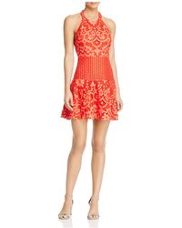 Bcbg max azria leona lace dress