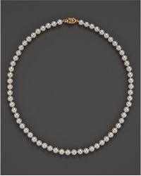 Tara Pearls - 16'' - Lyst